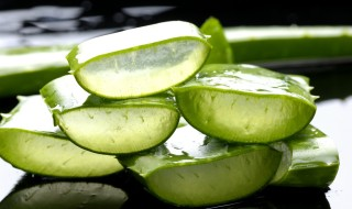 aloe-vera-for-irregular-periods